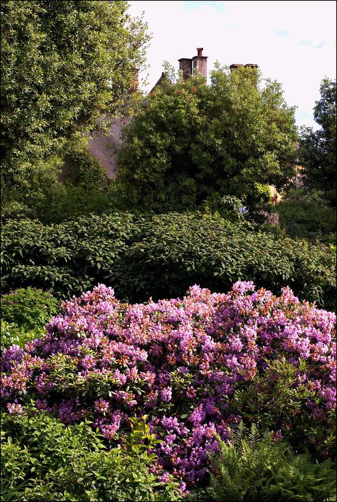 Hidcote Manor Garden view