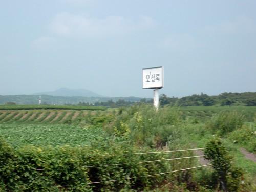 제주도 여행 (20080819-143421)