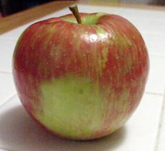 Apple (light)
