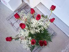 v flowers
