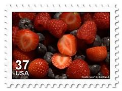 Frutti rossi stamp