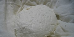 Chevre V:  Finished Cheese