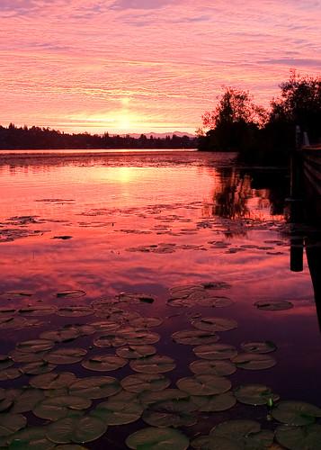 Sunrise over the Arboretum Wetlands