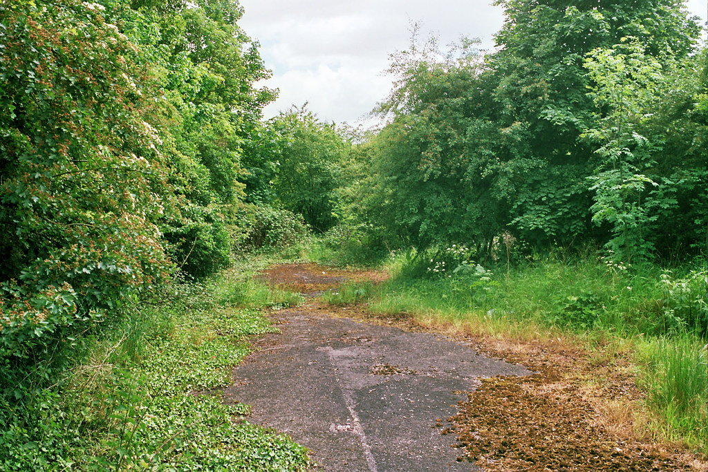 A road reclaimed