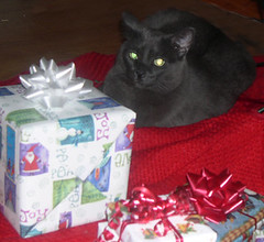 Another Present Under the Tree