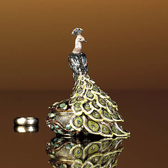 Pretty as a Peacock - Accessories