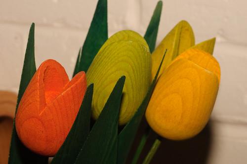 11/365 Wooden tulips