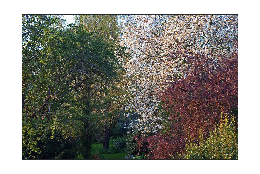 Spring colours 1