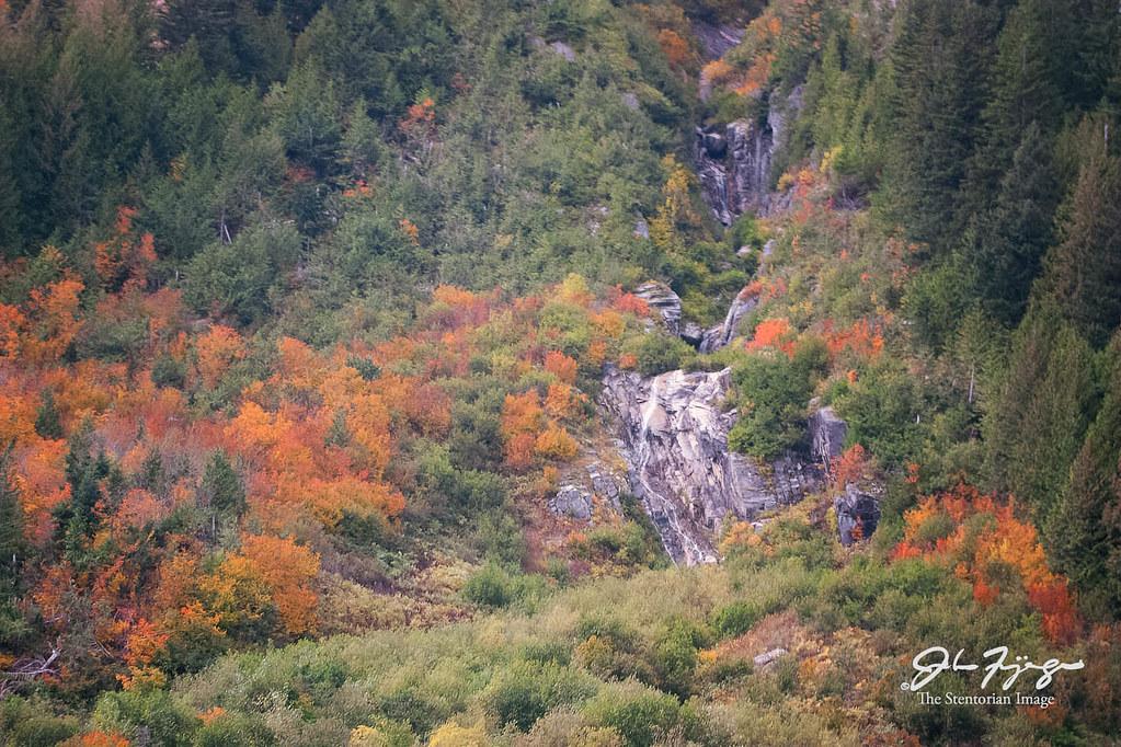 Autumn Mountainside