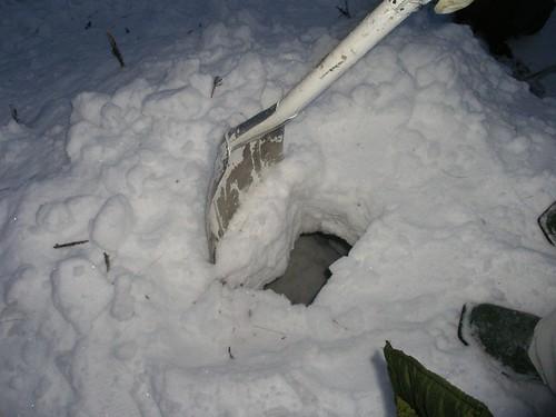 Destruyendo el iglú