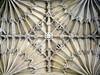 Divinity School Ceiling