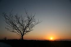 Preston Sunset
