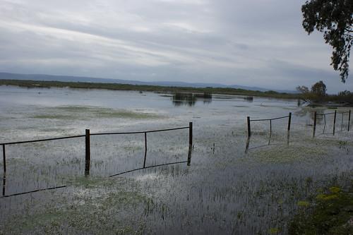 Lake Tonga