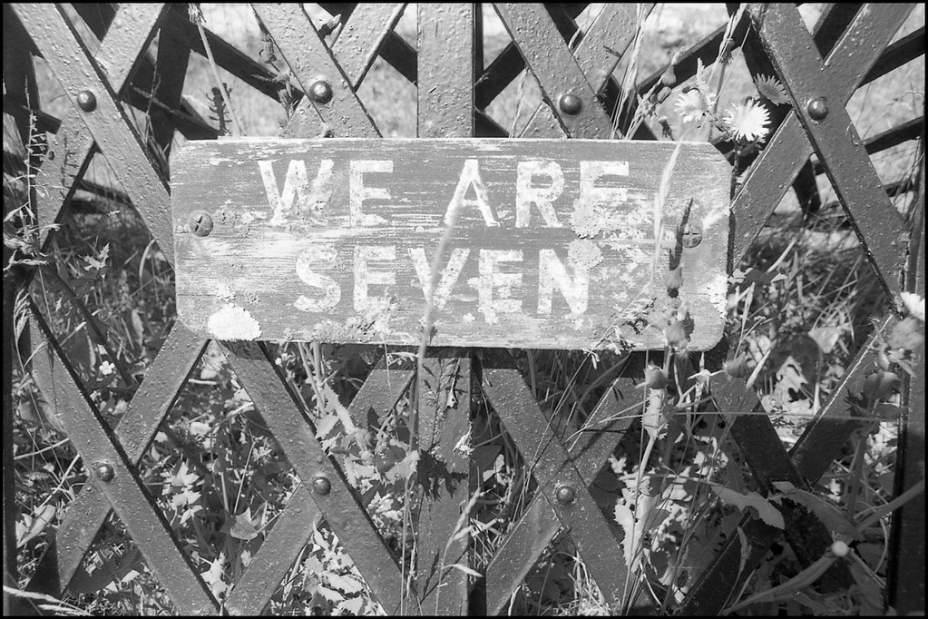 We are seven