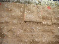Wall climbing