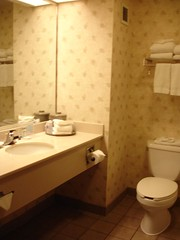 Bathroom, Hampton Inn & Suites at the University, Nashville TN