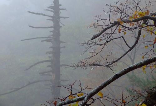 Seorak mountain 036