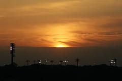 Dawn over USF