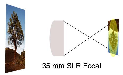 35mmSLRFocal