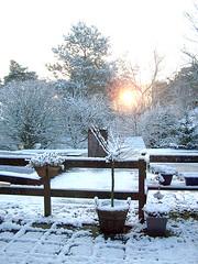 Sneeuw in Maarn