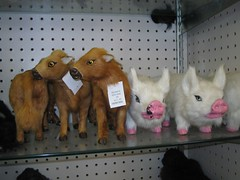 Scary stuff for sale at ozarkland