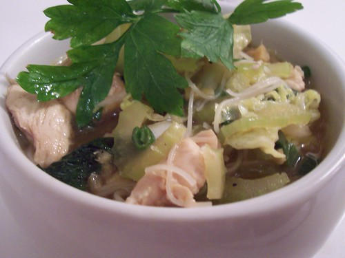 Chicken-Vegetable Noodle Soup