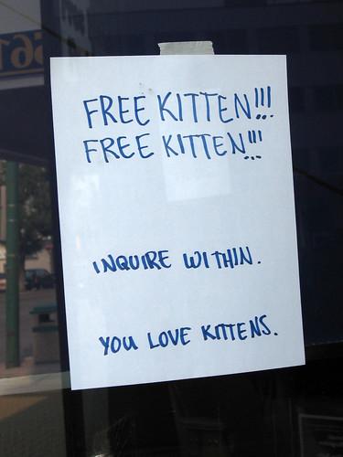 """""""Free Kitten!!! Free Kitten!!!"""""""
