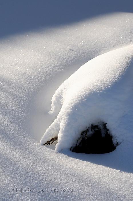 Snow Forms