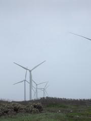 觀音風力發電廠