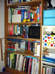 upstairs bookcase lower