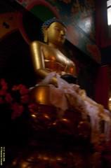 Buddha's Golden Statue