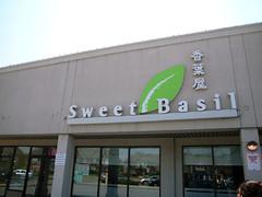 Sweet Basil 9