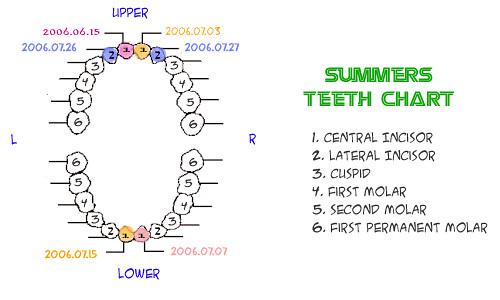 Summertooth