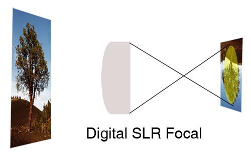 DSLRFocal