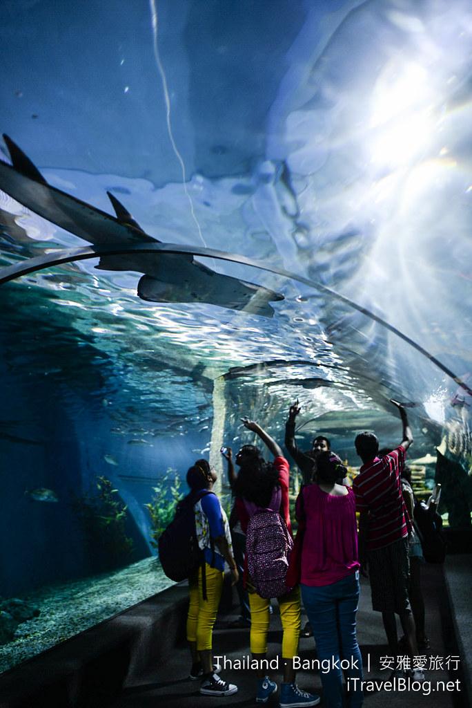 Siam Ocean World Bangkok 48