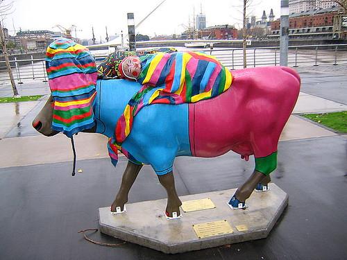 vaca del altiplano