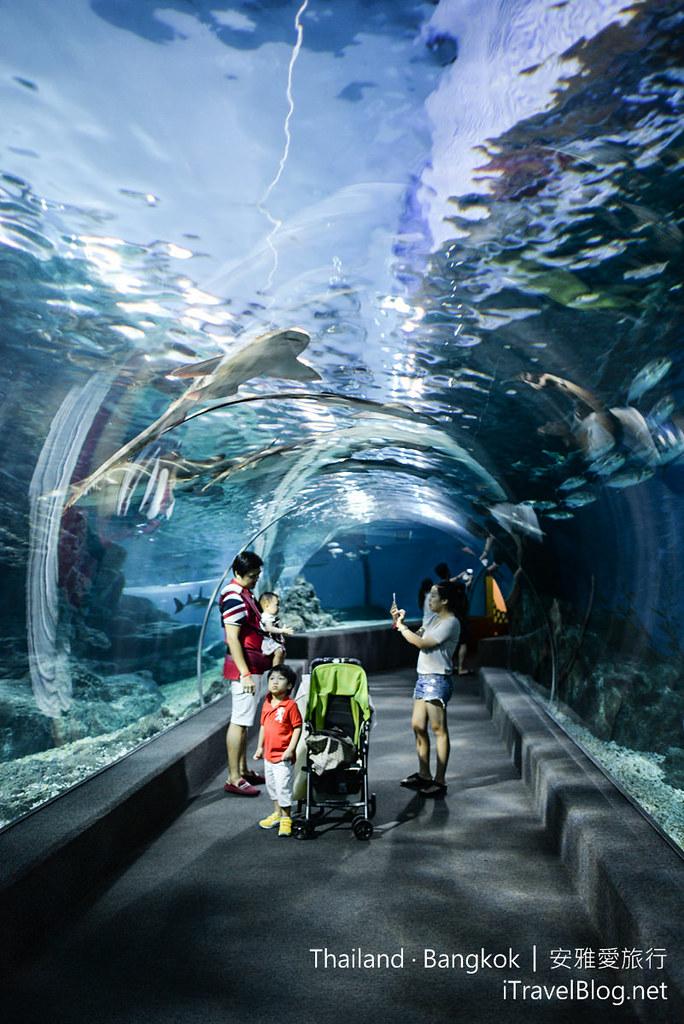 Siam Ocean World Bangkok 49