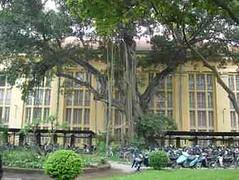 Tree_building