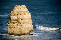 A lone image from the Great Ocean Road