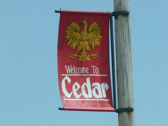 Welcome to Cedar