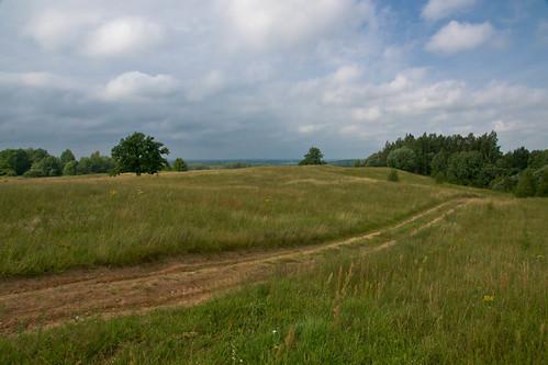Ant Kojeliškių (Kličiaus) kalno