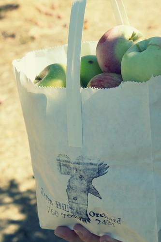 Raven Hill Apple Orchard, Julian, CA