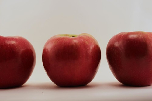Line of Honeycrisp
