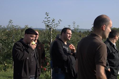 Sampling Apples