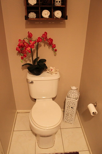 Powder Room Redesign Changing My Destiny