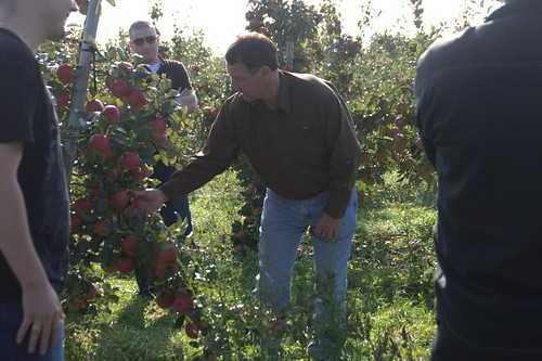 How To Produce Good Apples