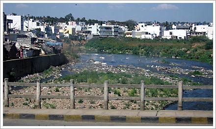 Toxic Bangalore