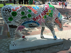 Comenclature Cow in Boston
