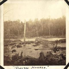 Beaver Houses
