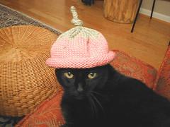 Black in the hat